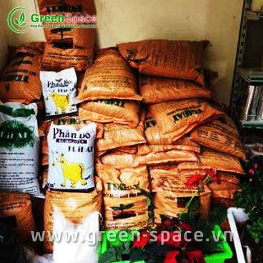 Đất trồng rau hữu cơ